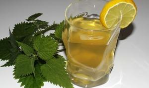 Boisson amincissante maté menthe, citron et ortie