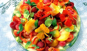 Salade d'été Capucine - Bistro de Jenna