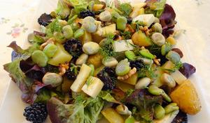 Salade de fèves aux mûres et gorgonzola
