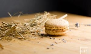Macaron à la mousse de foie et à la lavande