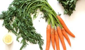 Pesto de fanes de carottes et menthe