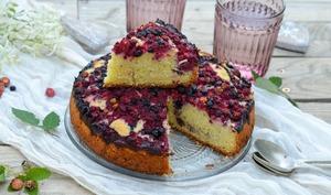 Gâteau aux fruits des bois