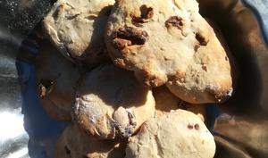 Biscuits aux cranberrys Fit
