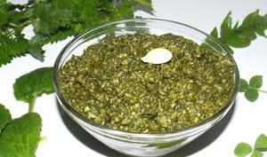 Pesto de plantes sauvages aux graines de courge