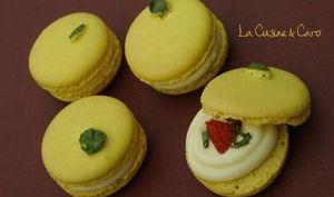 Macarons Citron Fraise Basilic