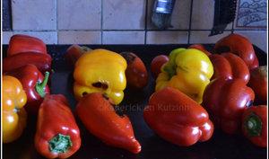 Poivrons grillés multicolores à la plancha