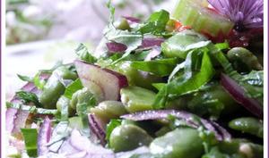 Salade de fèves fraîches, céleri branche et oignon rouge, sauce orange cumin