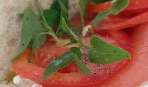 Le Sandwich au saumon fumé, ricotta et basilic
