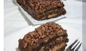 Bûche entremet « biscuit et mousse au chocolat »