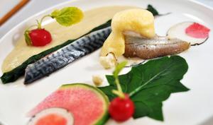 Maquereau, merlan et variation de radis