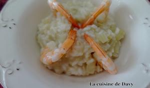Risotto au fenouil et crevettes