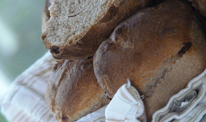 Petits pains à la farine de châtaigne et aux dés de figues sèches
