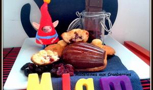 Madeleines aux Cranberries & fond de Chocolat au Lait