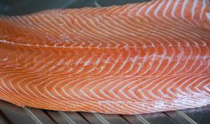 Lever des filets de saumon