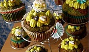 Cupcakes chocolat menthe