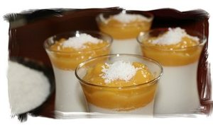 Panna cotta coco / mangue