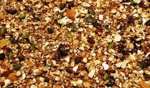 Granola aux fruits secs