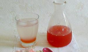 Sirop de Rhubarbe au Citron Vert et à la Rose