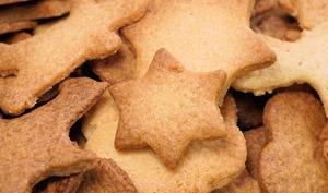 Ti'biscuit prépare noël avec ses amis