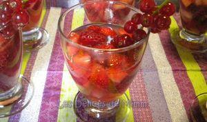 Sangria rose