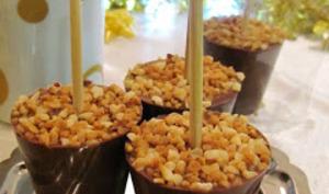 Sucettes de chocolat à fondre : chocolat au lait - praliné