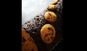 Bûche chocolat fruit de la passion