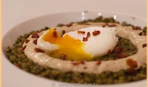 Oeuf poché sur lit de lentilles vertes et crème de champignons