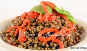 Salade de lentilles aux poivrons rouges