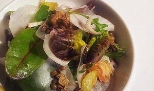 Salade tiède de lentilles, chips crues de topinambour et bulots en sauce ravigotée
