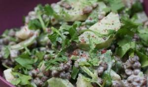 Salade de lentilles aux radis vert et noir
