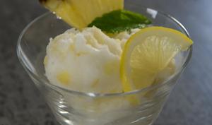 Sorbet au citron et aux dés d'ananas