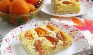 Gâteau au fromage et aux abricots