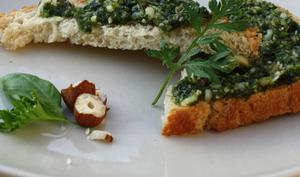 Pesto aux fanes de carottes et noisettes