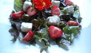 Salade estivale feta, fraises et olives confites, vinaigrette vanillée