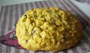 Cookies aux flocons d'avoine aux 2 chocolats