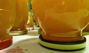 Coulis de prunes mirabelles aux épices
