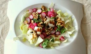 Salade de radis tièdes, endives et noix