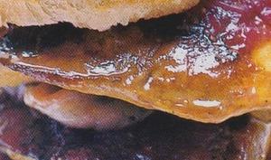 Hamburger de foie gras de canard aux figues
