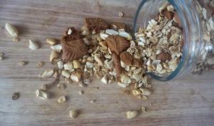 Muesli maison cacahuètes noix de cajou et spéculoos à l'Actifry