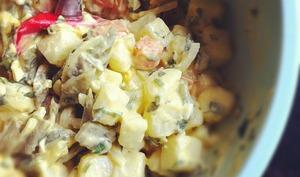 Salade de légumes, restes de boeuf bouilli, oeufs, anchois, olives, fines herbes