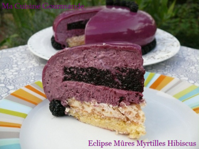 Eclipse Mûre Myrtilles Hibiscus