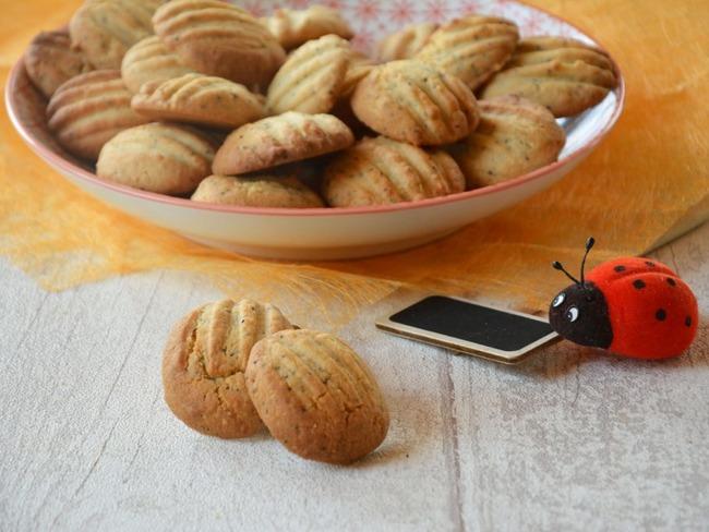 Sablés pattes de chat aux graines de pavot