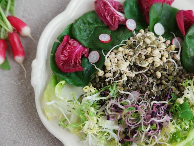 Faites germer vos pousses de soja , c'est hyper facile ...