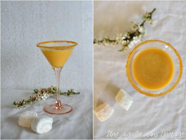 Cocktail vodka-abricot