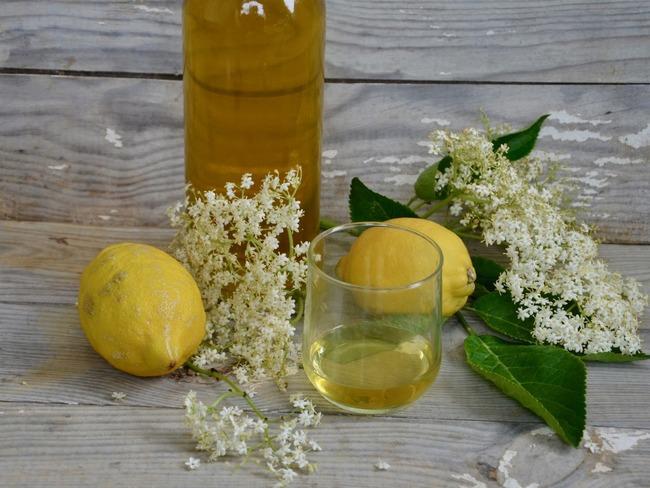 Liqueur de fleur de sureau
