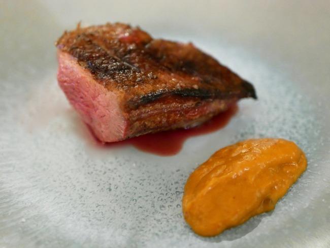 Filet de canette grillé et sauce abricot