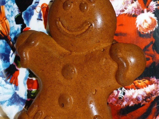 Ti'Biscuit en Laponie