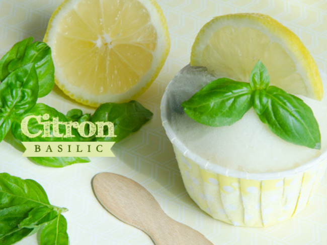 Sorbet citron basilic