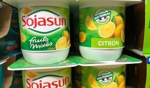 Yaourts au citron Sojasun