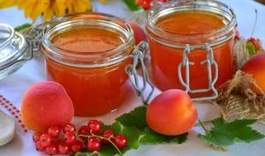 Pots de confiture d'abricots